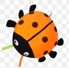 Ladybug - Ladybird Beetle Bamboo Charcoal Activated Carbon Clip Art PNG
