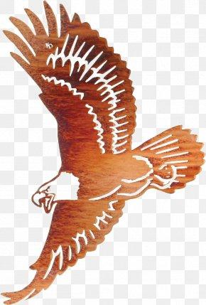 Eagle - Bald Eagle Wall Decal Metal PNG