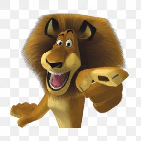 Cartoon Lion - Alex Melman Marty Madagascar DreamWorks Animation PNG