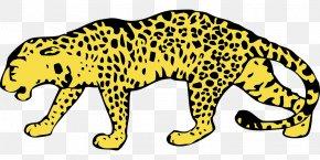 Leopard - Amur Leopard North-Chinese Leopard Snow Leopard Cheetah Clip Art PNG