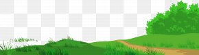 Meadow With Path Clipart Picture - Lawn Text Meadow Graphics Illustration PNG