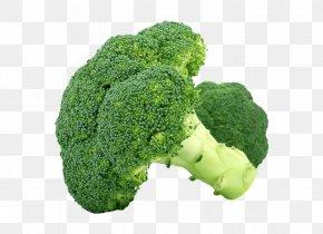 Broccoli - Broccoli Organic Food Vegetable Cabbage Sulforaphane PNG