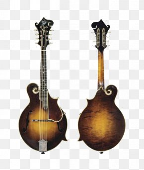 Vintage Guitar - Mandolin Sound Hole Fingerboard Musical Instrument Guitar PNG