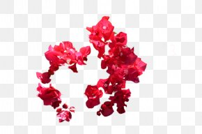 Red Flower - Red Flower Clip Art PNG