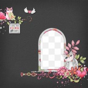 Owl Black Frame - Little Owl Picture Frame PNG