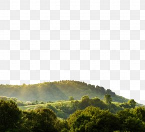 Beautiful Mountain Scenery Field - Nature Landscape Display Resolution Wallpaper PNG