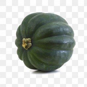 Acorn Squash Transparent - Cucurbita Pepo Pumpkin Seed Acorn Squash Winter Squash PNG
