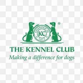 Puppy - Bolognese Dog Coton De Tulear Puppy The Kennel Club PNG