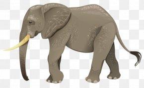 Elephant - Turtle Animal Wildlife Elephant PNG