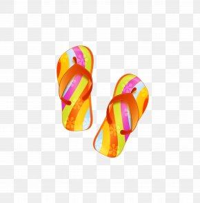Vector Hand-drawn Cartoon Sandals - Slipper Beach Sandal Flip-flops PNG