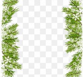 Grove - Christmas Icon PNG