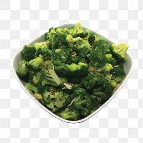 Broccoli - Broccoli Slaw Vegetarian Cuisine Food Vegetable PNG