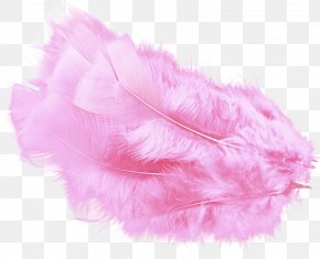 Pink Feather - Feather Boa Pink PNG