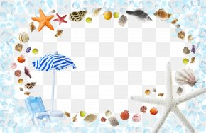 Shell Decorative Background - Template Summer Poster PNG