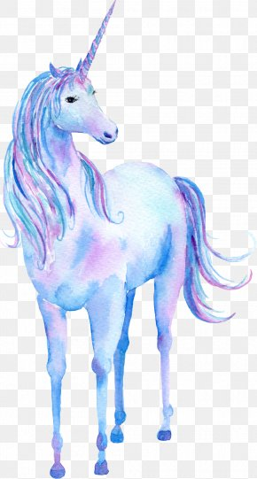 Unicorn Cartoon Animal - Unicorn Watercolor Painting Poster PNG