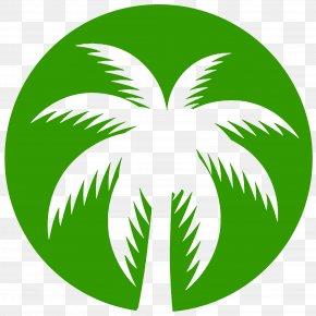 Leaf - Arecaceae Green Leaf Plant Stem Clip Art PNG