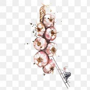 Garlic - Watercolor Painting Drawing Food Illustration PNG