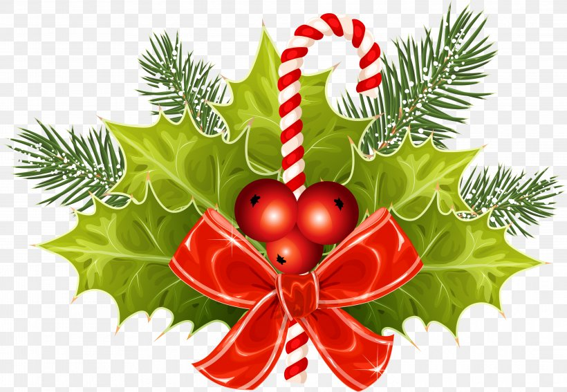 Candy Cane Vector Graphics Christmas Day Clip Art Image, PNG, 4357x3016px, Candy Cane, Branch, Christmas, Christmas Day, Christmas Decoration Download Free