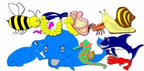 Kindergarden Pictures - Pre-school Kindergarten Education Clip Art PNG