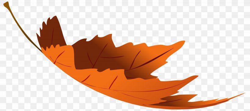 Autumn Leaf Color Clip Art, PNG, 6000x2683px, Leaf, Autumn, Autumn Leaf Color, Autumn Leaves, Color Download Free