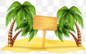 Transparent Beach Palm Decoration Clipart - Beach Summer Clip Art PNG