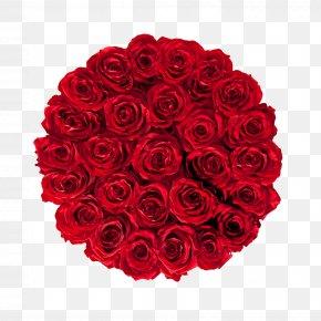 Preserved - Flower Bouquet Cut Flowers Garden Roses Rosa Gallica PNG