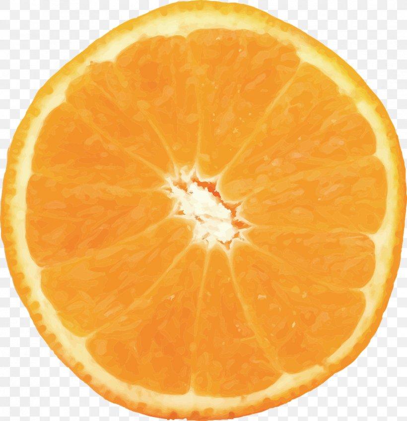 Orange Juice Orange Slice Food Valencia Orange, PNG, 1236x1280px, Orange Juice, Bitter Orange, Blood Orange, Citric Acid, Citrus Download Free