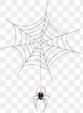 Spider And Web Transparent Clip Art Image - Spider Web Clip Art PNG