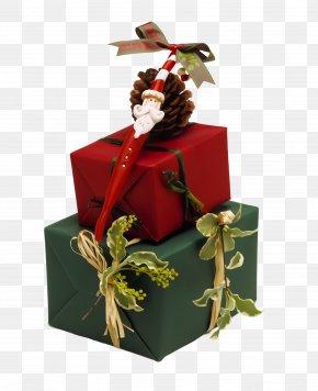 Christmas Ornament Plant - Christmas Ornament PNG