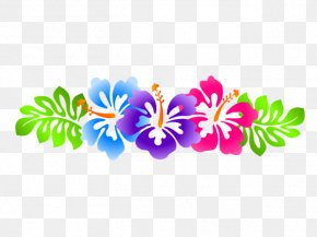 Hawaii Border - Clip Art Borders And Frames Rosemallows Vector Graphics Image PNG