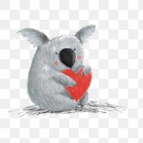 Cartoon Koala - Koala Cartoon Drawing READ And HEAR Edition: Thoughts To Make Your Heart Sing Illustration PNG