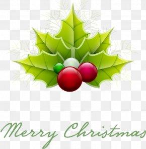 Christmas - Christmas Ornament Christmas Tree Santa Claus Clip Art PNG