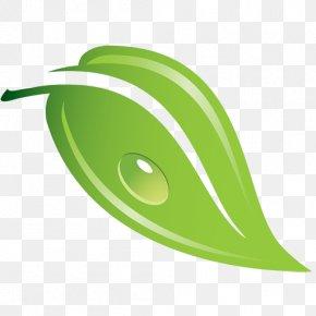 Yaprak - Leaf Logo Clip Art PNG