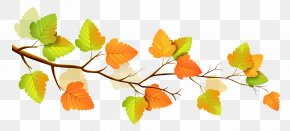Fall Branch Decor Clipart - Autumn Branch Tree Clip Art PNG