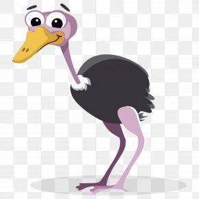 Ostrich Cliparts - Common Ostrich Free Content Clip Art PNG