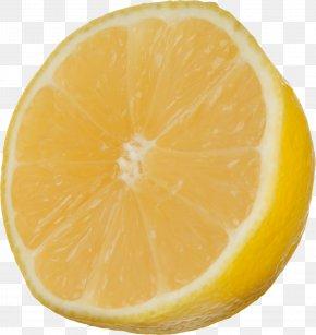 Lemon - Volkamer Lemon Aqua Velva Tangelo Grapefruit PNG