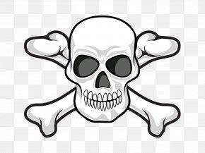 Personality Skull - Human Skull Symbolism Skull And Crossbones Jolly Roger PNG