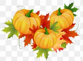Thanksgiving Pumpkin Decoration Clipart - Pumpkin Thanksgiving Clip Art PNG