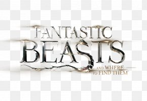 Newt Scamander Fantastic Beasts And Where To Find Them Film Series Queenie Goldstein Jacob Kowalski PNG