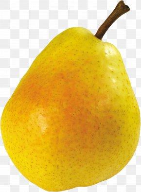 Ripe Pear Image - Pear Icon Clip Art PNG