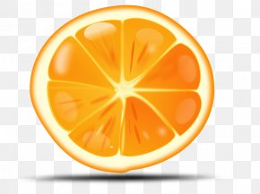Orange Image Download - Orange Clip Art PNG