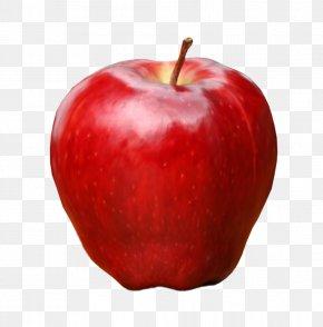 Apple - DeviantArt Clip Art PNG