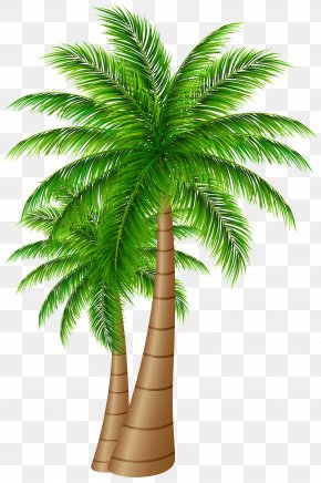 Palm Trees Large Clip Art Image - Palm Trees Coconut Clip Art PNG