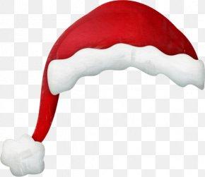 Santa Claus - Santa Claus Christmas Hat Character Wasp PNG