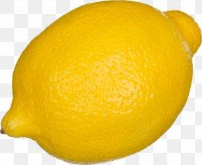 Lemon - Lemon Tart PNG