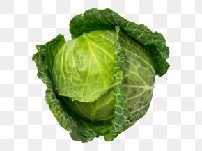 Brussels Sprout Collard Greens - Vegetables Cartoon PNG