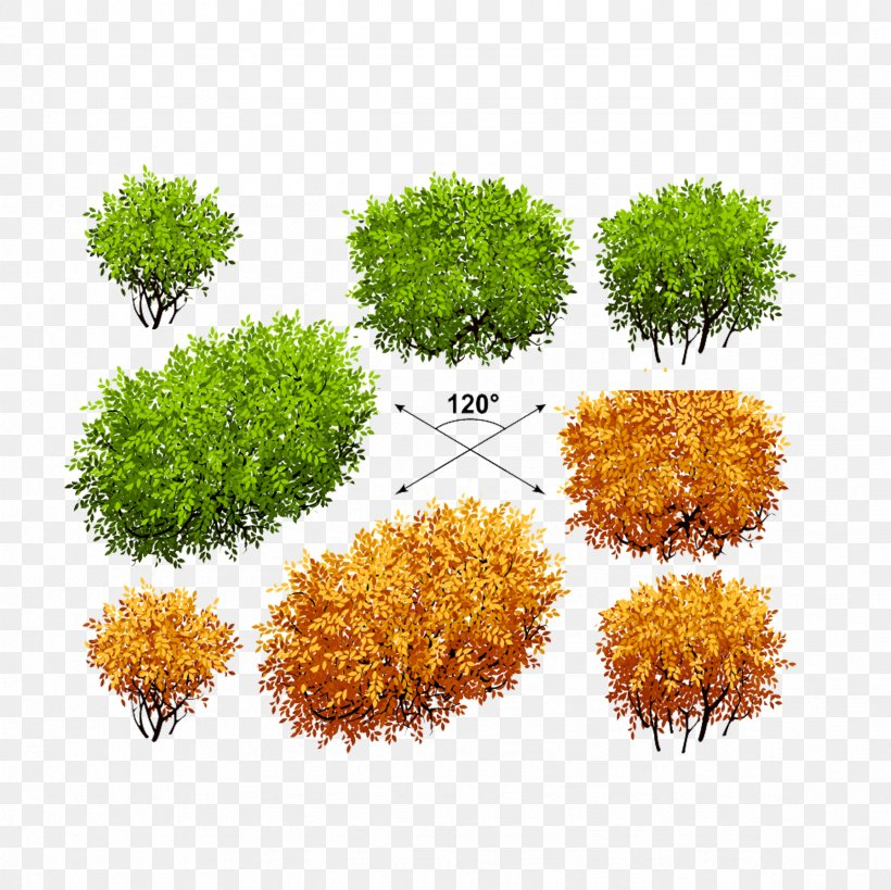 Shrub Euclidean Vector Tree Plant, PNG, 2362x2362px, Shrub, Autumn Leaf Color, Crown, Drawing, Flowerpot Download Free
