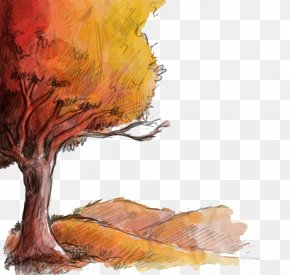 Fall Tree - Autumn Drawing Euclidean Vector PNG