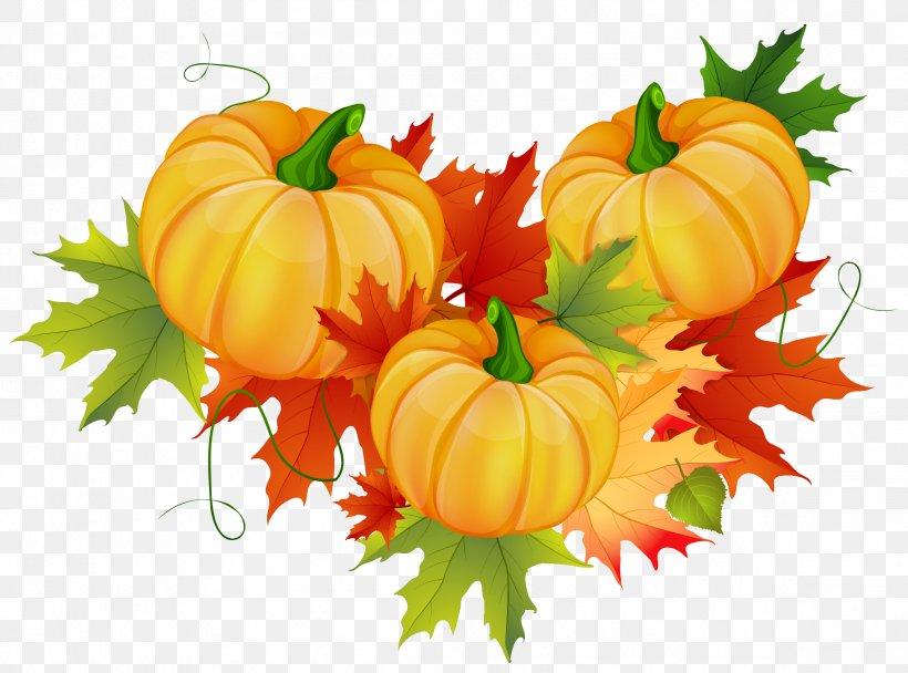 Thanksgiving Pumpkin Clip Art, PNG, 2313x1717px, Thanksgiving, Autumn, Calabaza, Cornucopia, Cucurbita Download Free