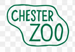 Chester - Chester Zoo Knowsley Safari Park Tourist Attraction Hotel PNG